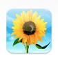 スクリーンショット 2012-07-20 8.46.53.png