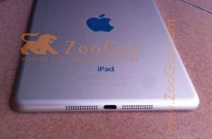iPad-mini-image-1-300x197.jpg